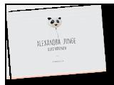 Alexandra Junge Portfolio pdf