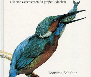 vom Fische, der ein Künstler war Cover Kinderbuch mixtvision Verlag Berlin